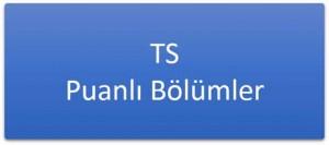ts-puanli-bolumler-300x133