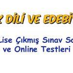 Açık Lise Türk Dili ve Edebiyatı Çıkmış Sınav Soruları, Açık lise test çöz 2019