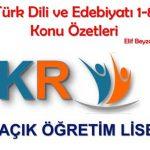 Türk Dili ve Edebiyatı 1-8 Konu Özetleri