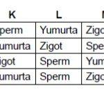 Açık Lise Biyoloji 3 Test 1